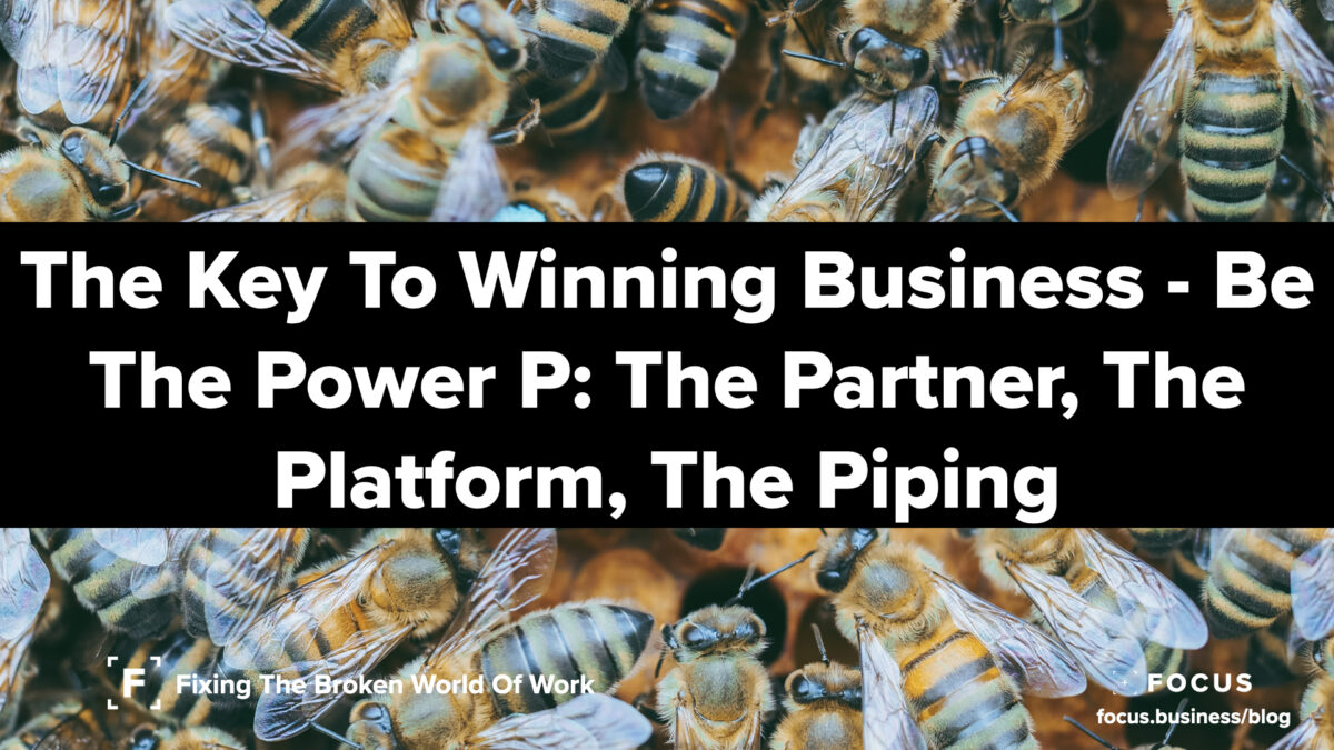 The Key To Winning Business - Be The Power P- The Partner, The Platform, The Piping